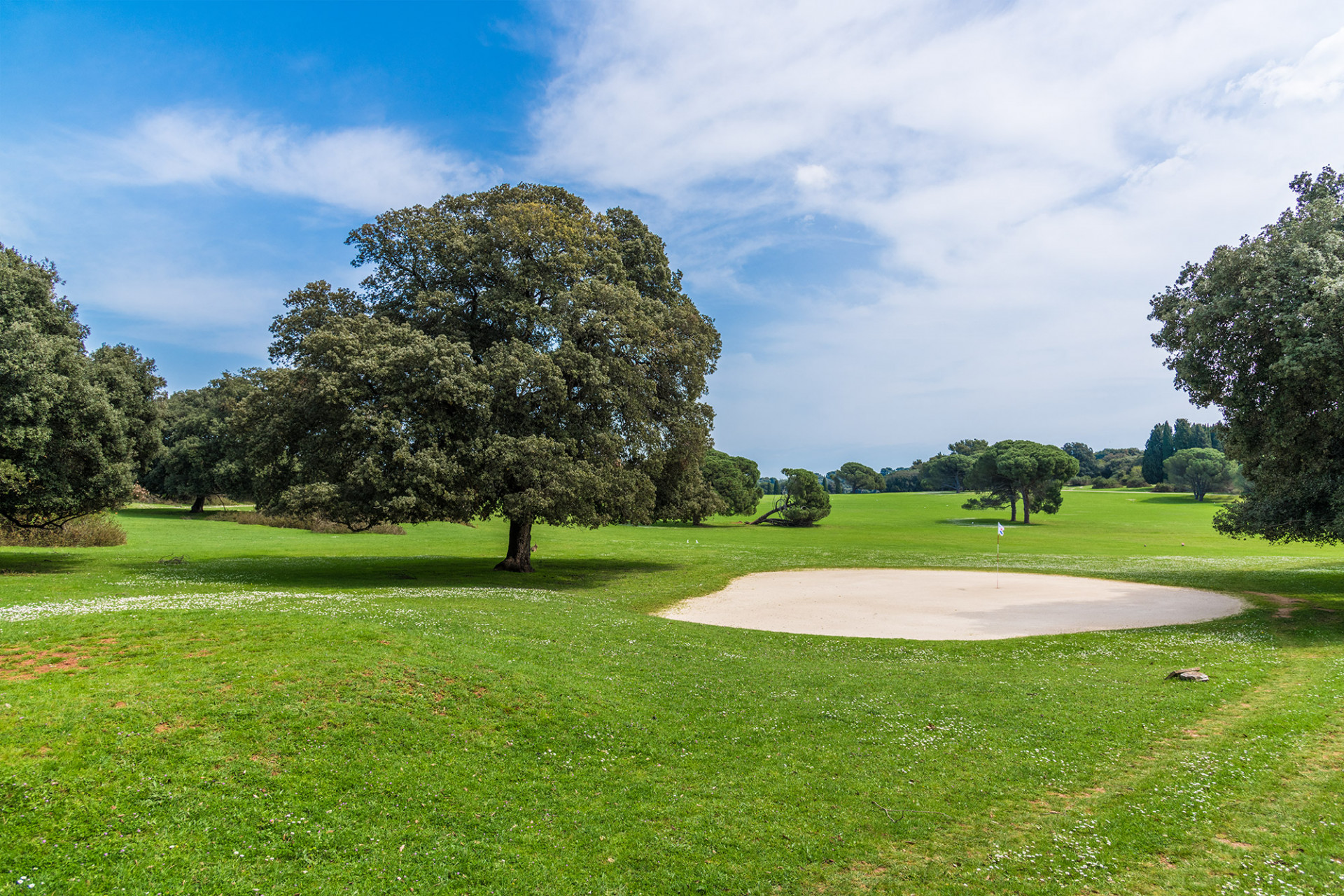 Postoji li stranica za upoznavanje golfa